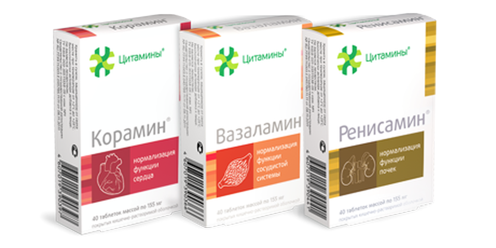 Complex of cytamins for the cardiovascular system buy online