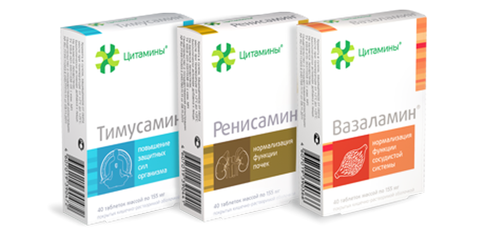 Complex of cytamins for the urinary system buy online